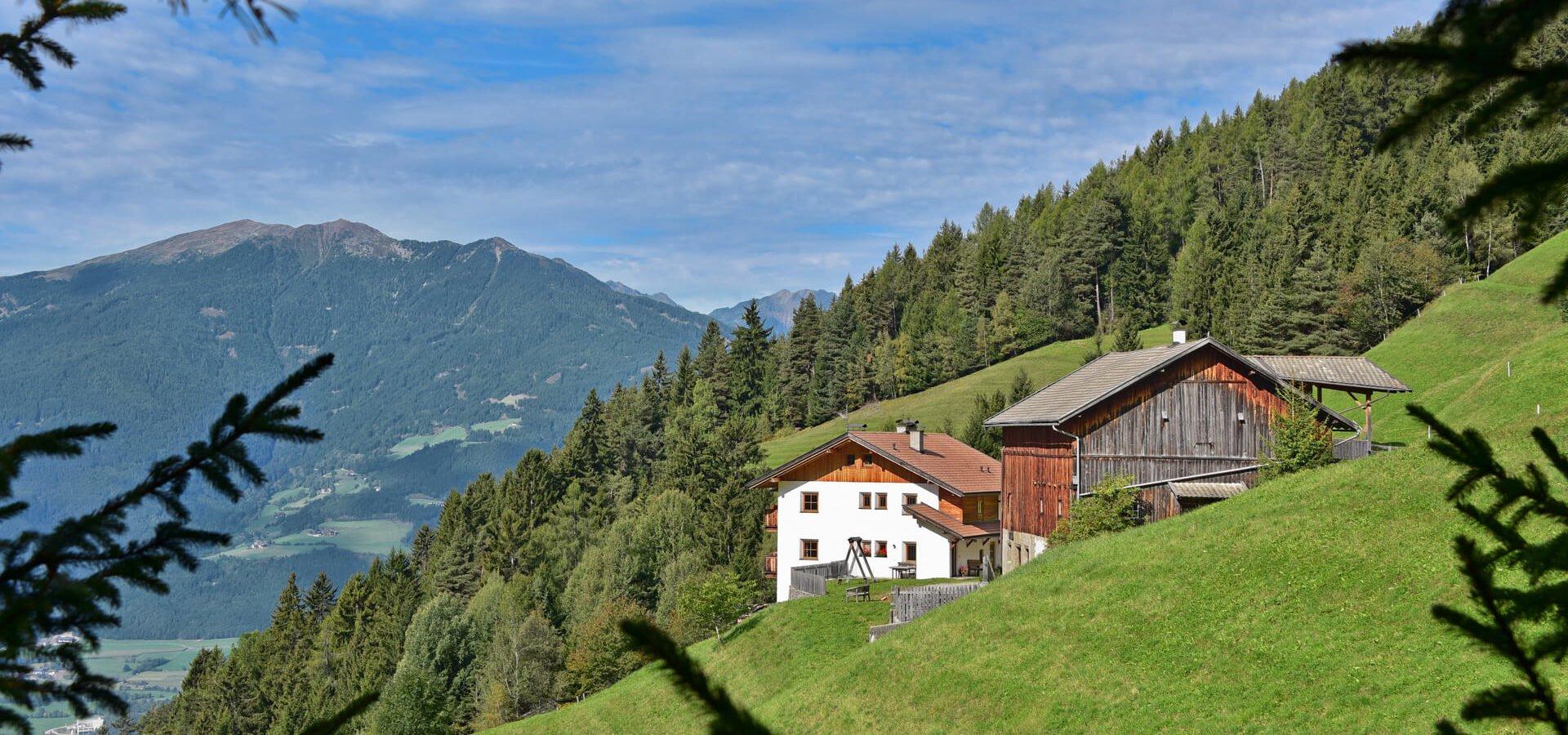 urlaub auf dem bauernhof in brixen s dtirol obererhof am plose berg. Black Bedroom Furniture Sets. Home Design Ideas