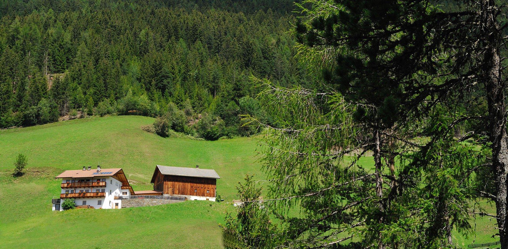 Vacanza nella natura di Alto Adige